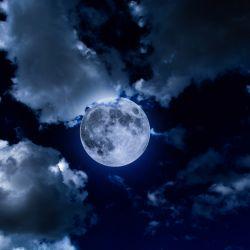 Horoscop Marusia  Ultima saptamana din Brumar