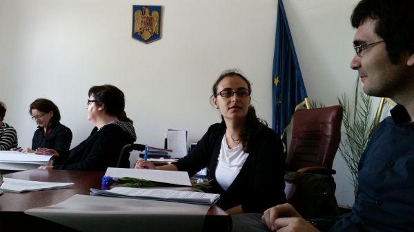Consiliul de analiză a problemelor persoanelor cu handicap